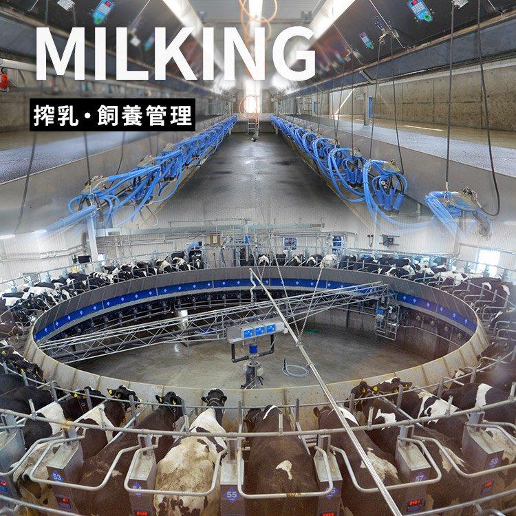 MILKING 搾乳・飼育管理
