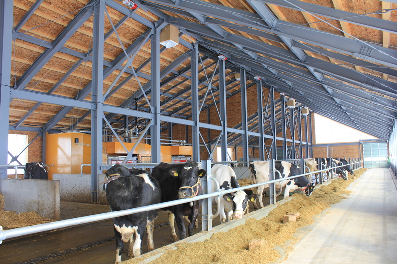 搾乳ロボット 2台並列牛舎