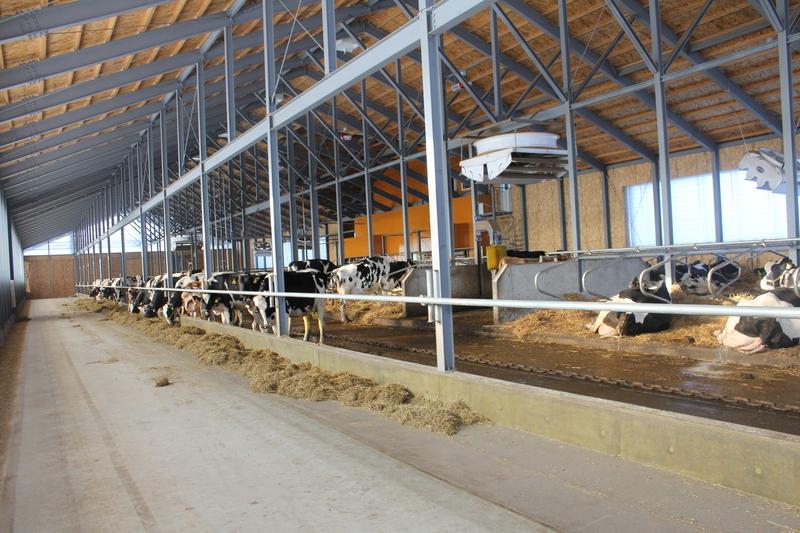 Tkf_barn_in_9.JPG